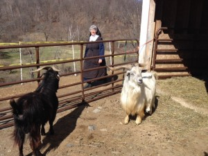 Sister Mary Elizabeth sings to Sir Lancelot and friend.
