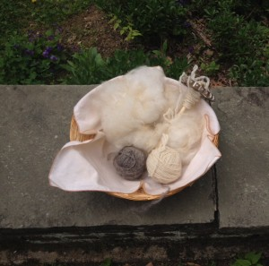 During our hand work time, I plied the Lincoln (L) and Clun Forest (R) and made rolags from the Jacob.