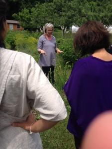 Chris provides an orientation to the biodynamic dye garden