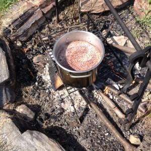 elderberries simmering over an open fire