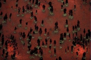 aerial view of central Australia