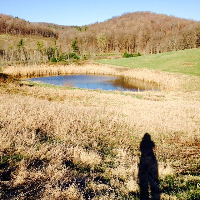 Christ the King Retreat Center has excellent trails and beautiful views.