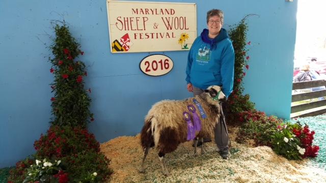 Jan of Fair Winds Farm with her award-winning Finnsheep.
