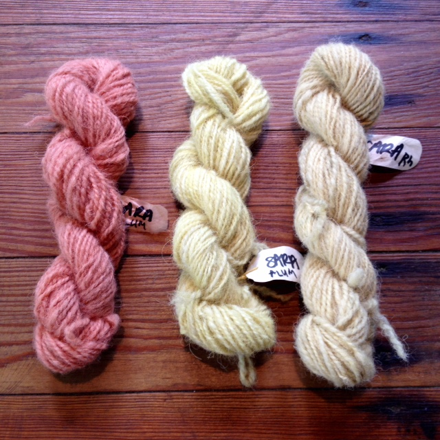 From L to R: alum mordant / madder pot; alum mordant / weld pot; rhubarb mordant / weld pot.