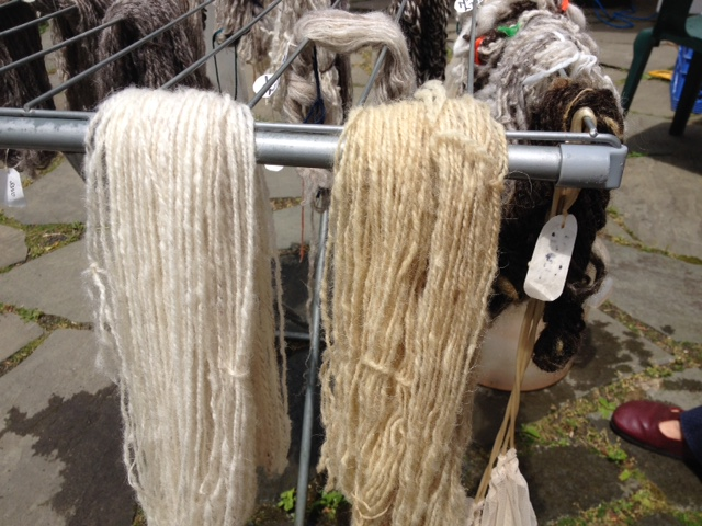 I prepared four skeins for dyeing: the two on the left were treated with an alum mordant; the two on the right with my homemade rhubarb mordant.