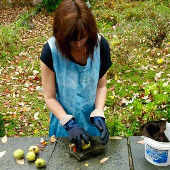 Preparing walnuts for a dye bath. I'm wearing my indigo-dyed smock!